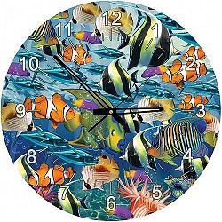 Art puzzle - Puzzle Multi Fish - 570 dielov