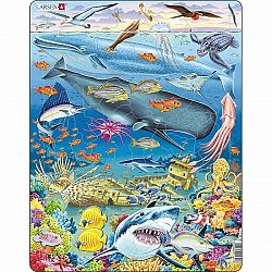 Larsen Puzzle Veľrybí útes, 66 dielikov