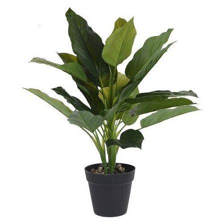 Koopman Umelá rastlina v kvetináči Carly, 45 cm